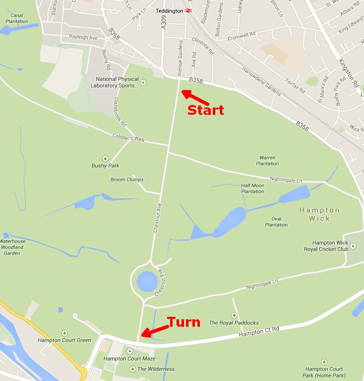 Bushy Park 50 mile overnight training walks map