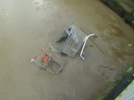 Shopping trolleys in the River Thames
