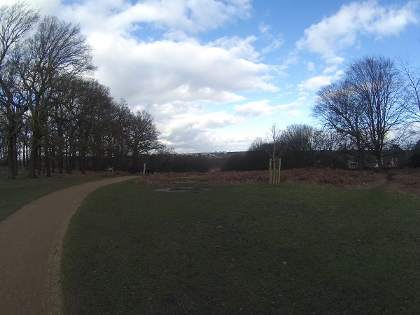 Richmond Park looking towards the A3