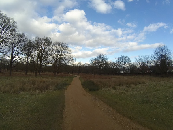 Richmond Park near Sheen Gate