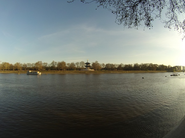 Looking across the river towards Battersea Park