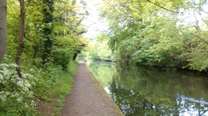 Grand Union Canal at about 7 miles
