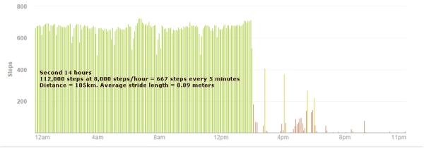 Fitbit graph from second 14 hours