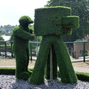 hedge people