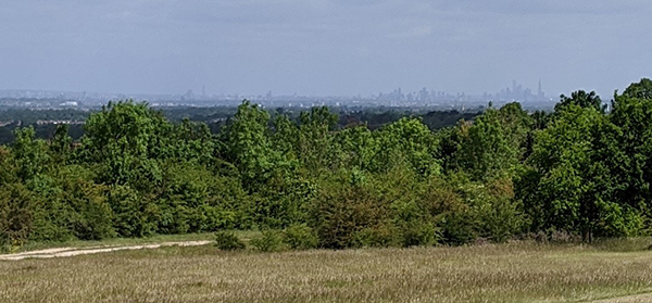 View of London from Epson Racecourse