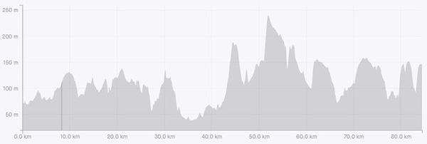 Surrey circumnavigation leg 2 elevation